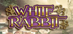 white rabbit videoslot
